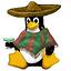 Linux服务器开发