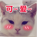 小pai_